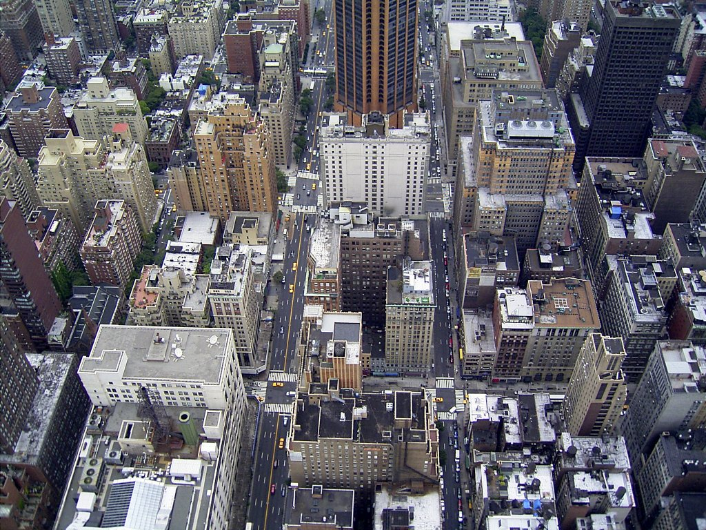 Breathtaking view from the Empire State Building